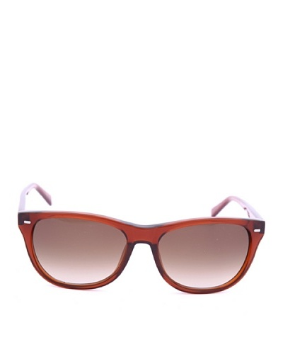Boss Gafas de Sol BOSS 0489/S HD Havana
