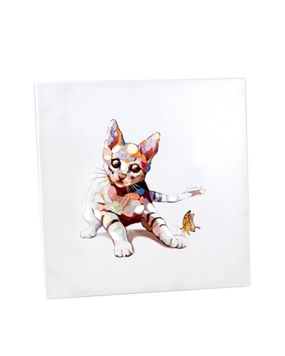 Korb Lienzo Gato Multicolor 60x60 Cm