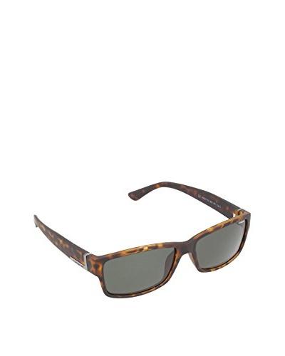 POLAROID Gafas P8427 RC96V