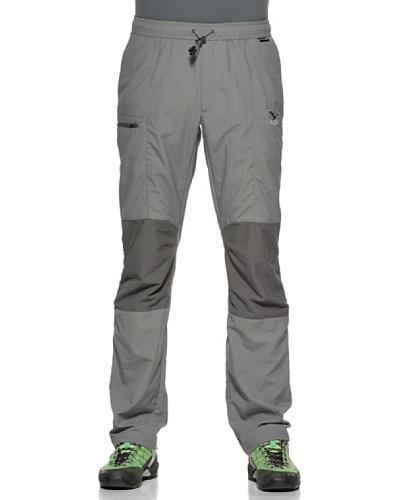 Salewa Ray Dry Pantalón Gris